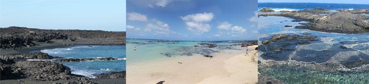 Playa de las Malvas, Caleton Blanco, Los Charcones